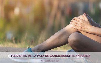 Tendinitis de la pata de ganso o bursitis anserina